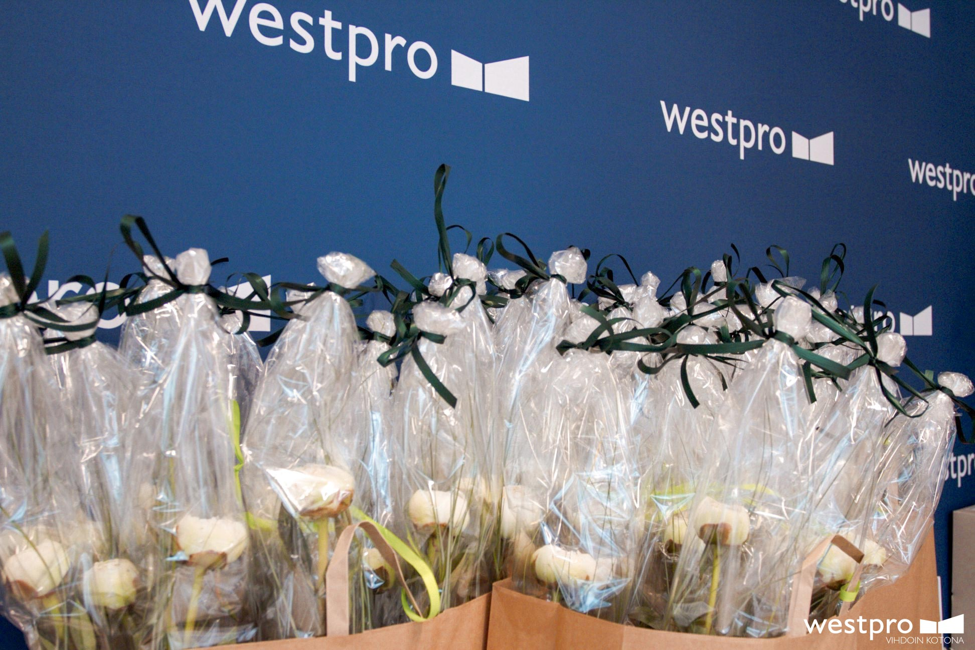 Westpro-Portus,-Verkkosaari-kukat